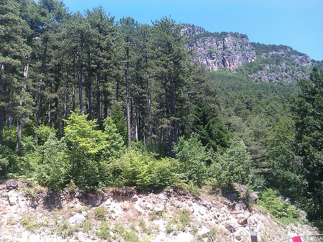 Mt. Olympus: Edo de Roo, CC BY 3.0 https://creativecommons.org/licenses/by/3.0, via Wikimedia Commons